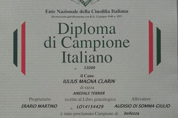 camp-italiano81C071D6-0565-1B6B-2152-DFCCFE17D67B.jpg
