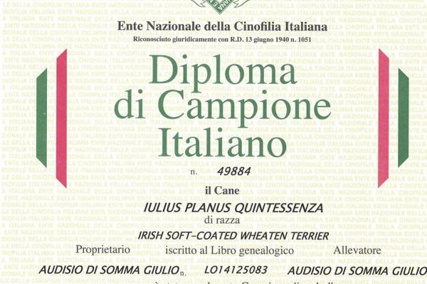 matilda-camp-italianoE1720E8E-CE0D-6302-B679-9C44D4B42640.jpg