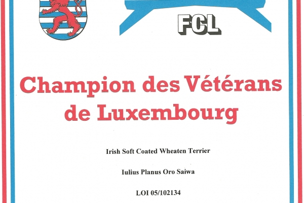 cam-veterani-lussemburgoC4858B4D-AE7A-483E-9B66-3CD1E02268CF.jpg
