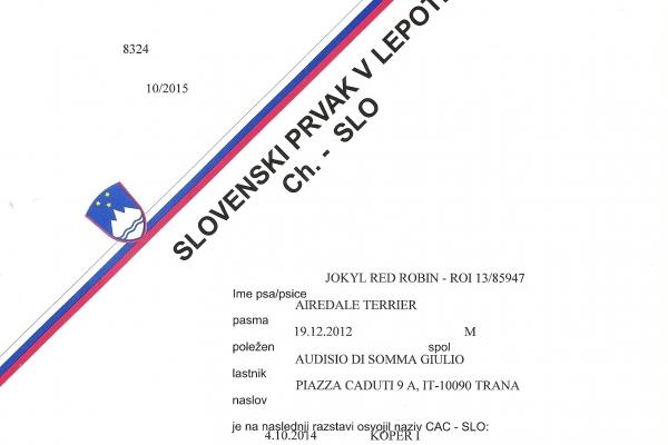 camp-sloveno4170C7A0-4A88-9E24-6273-2E98BB2B52A8.jpg
