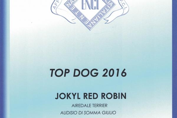 top-dog-20161F1D1BC0-ED9D-8D07-B6F4-EAE60CE1DF56.jpg