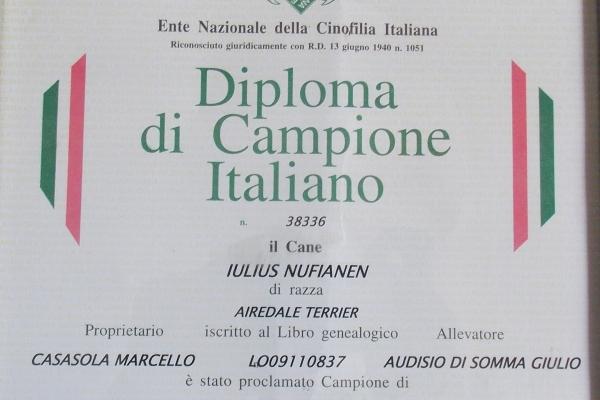 diploma3A591F6E-109A-AD46-88BA-DED08CB65987.jpg